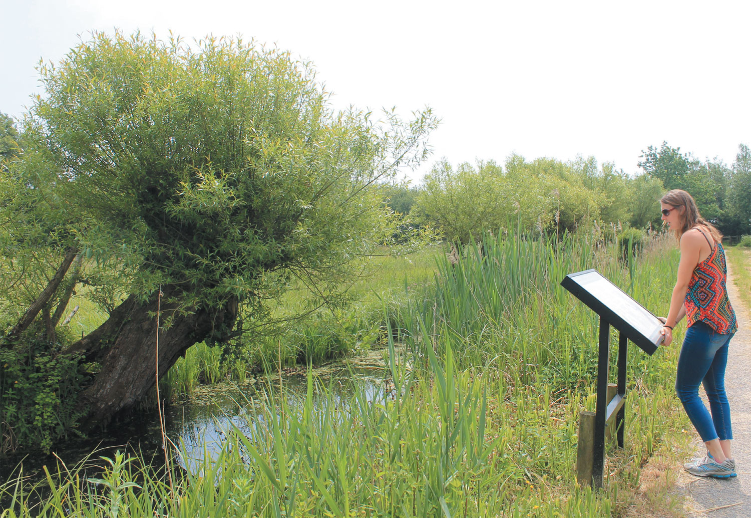 An exciting new project for the Gwent Levels